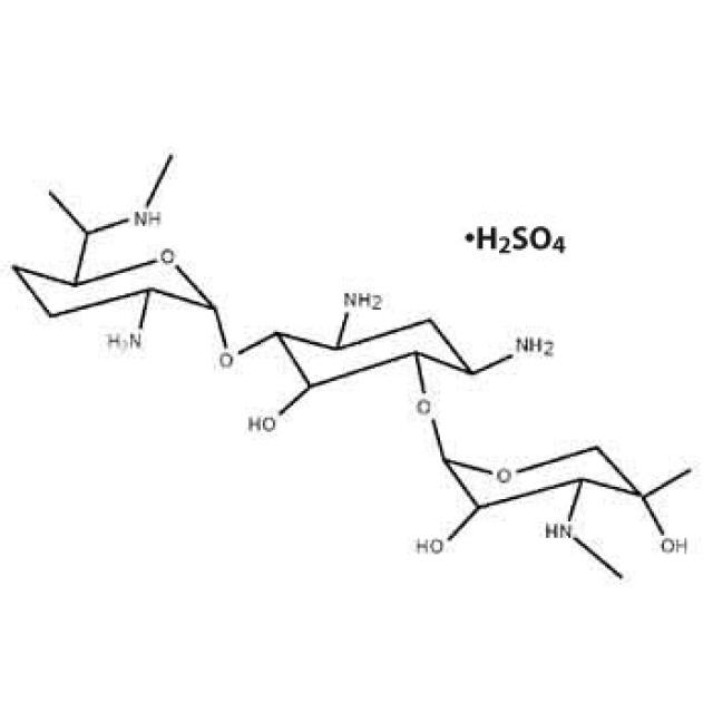 ゲンタマイシン 硫酸 塩